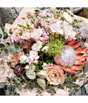 protea cyn.jpg