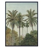 Megaposter Palms