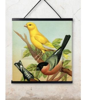 birds 50x50cm.jpg