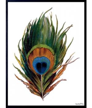 feather 30x40cm.jpg