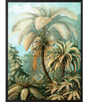 palm heaven 30x40cm.jpg