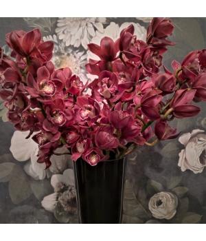Orhidee ok.jpg
