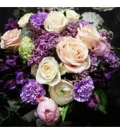 Lillekimp Ultraviolet (talv, kevad/suvi)