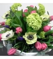 Lihtne kimp hooajalistest lilledest (talv/kevad)