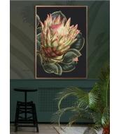 Megaposter Black Protea