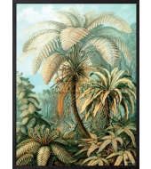 Poster Palm Heaven